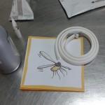 Prevención picadura mosquitos. Leishmaniosis.