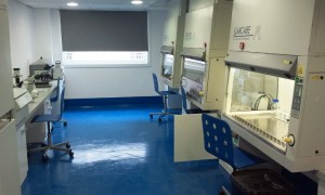 Sala blanca. Laboratorio Centauri-Biotech